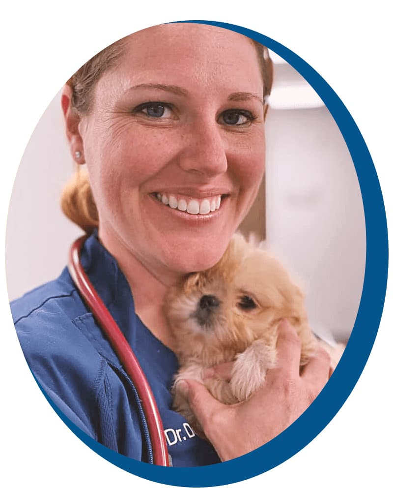 vet and puppy